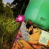 Sójová svíčka s vůní verbena&patchouli #aromanaturals #aroma #aromaterapie #sojovasvicka #svicka #homefragrance #leto #cerven #kvetiny #motiv #priroda #relax #darek #interier #exterier #baleni